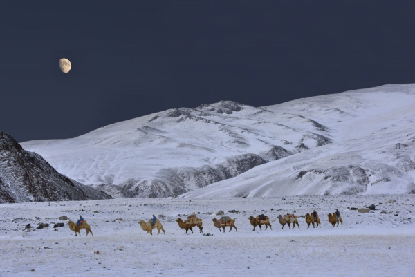 Mongolia: Nomads, Caravans and Migrations:  A spatial odyssey back in Time