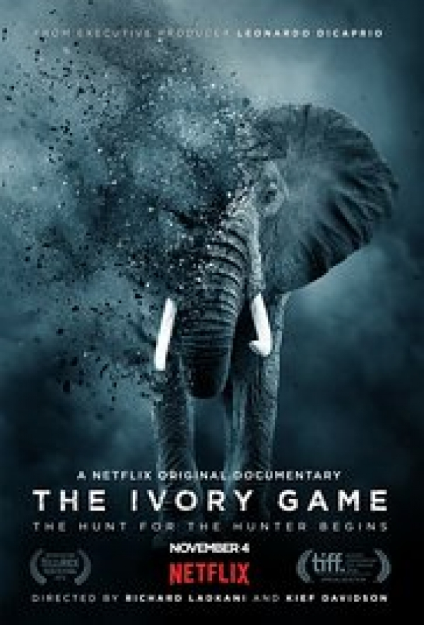 Film Screening: The Ivory Game