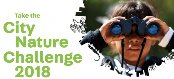 "Special Event: ""City Nature Challenge"" urban field trip - From Bowen Road walking trail to Hong Kong Park in Admiralty"